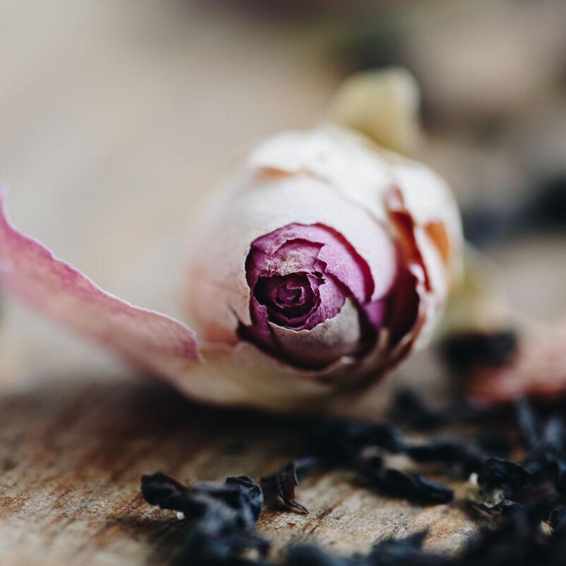 English Rose Loose Tea close up on rose bud