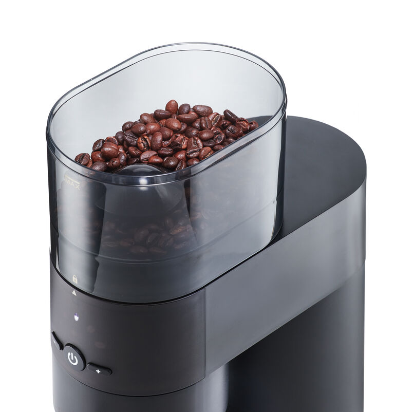 Hopper of Barista & Co Electric Coffee Grinder