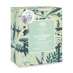 Cucumber Mint Iced Teabags