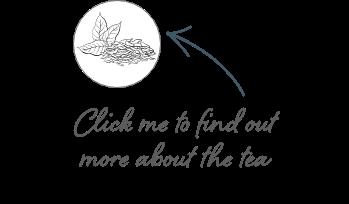 Battle Of The Brews Tea Tips Whittard S Wisdom Whittard Of Chelsea